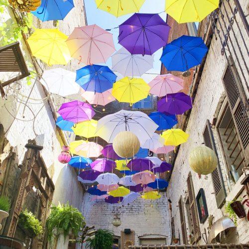 Red-Tree-umbrellas